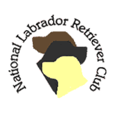 National Labrador Retiever Club Member